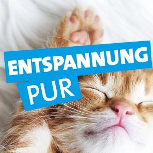 RPR1. Entspannung pur Logo