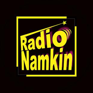 Radio Namkin Logo