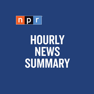 NPR Hourly News Summary Logo