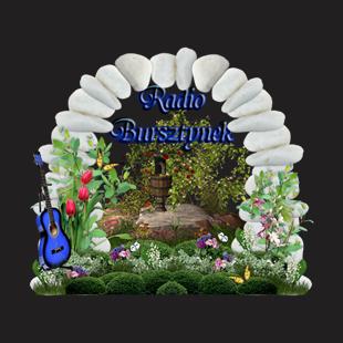 Radio Bursztynek Logo