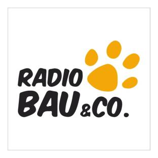 RMC - Radio Bau & Co Logo