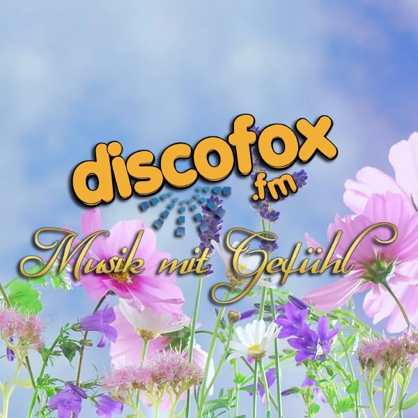 Disco Fox FM Logo