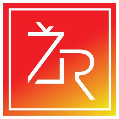 Žinių Radijas Logo